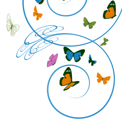 Butterfly Vortex fabric by wandering_philosopher on Spoonflower - custom fabric