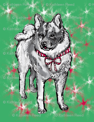 norwegian elkhound Christmas