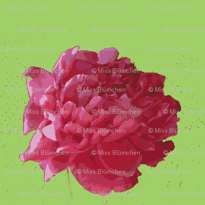 peony cotton voile-green