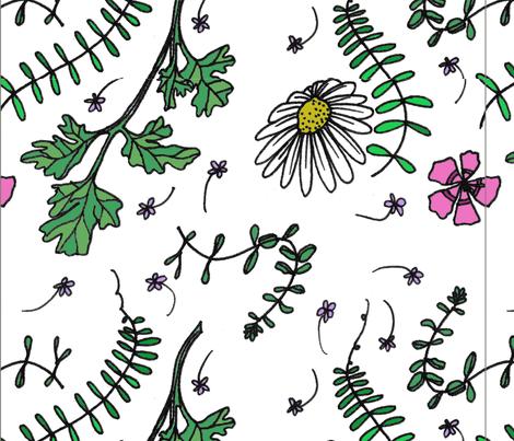 herbs fabric by borealchick on Spoonflower - custom fabric