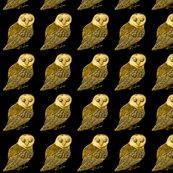 Rrobo_owl_shop_thumb