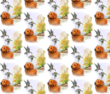 Nova Scotia Duck Toller with Ducks fabric by dogdaze_ on Spoonflower - custom fabric