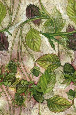 Wild Green Strawberries