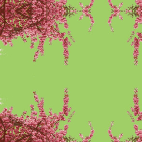 Cherry blossom pink-green