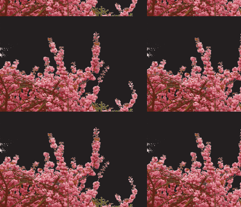 Cherry blossom pink-black fabric by miss_blümchen on Spoonflower - custom fabric