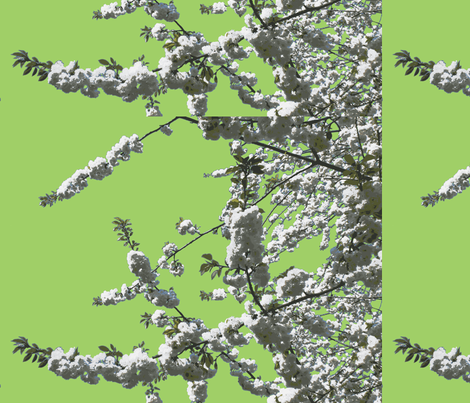 white cherry green fabric by miss_blümchen on Spoonflower - custom fabric