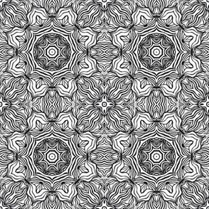 Monochrome Kaleidoscope - 8A