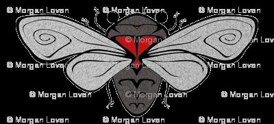 cicada_5x2