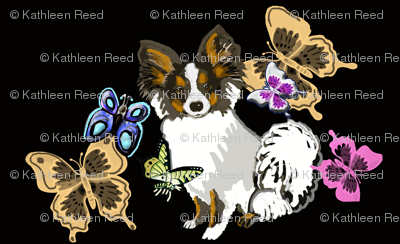 papillon and butterflies