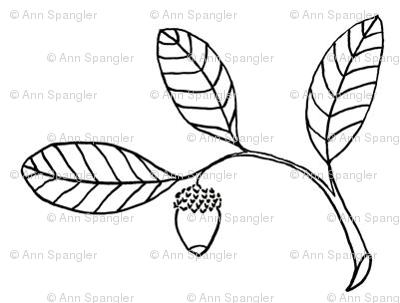 Acorn and Live Oak Leaves
