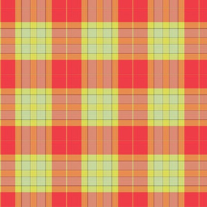 watermelon willow plaid
