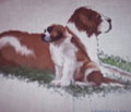 Rrrrrrrsaint_bernard_mother_and_puppy_large_comment_90467_thumb