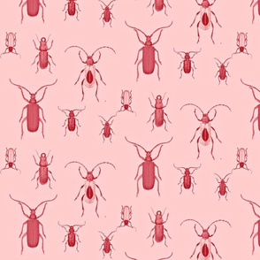 Pink Bugs Toile