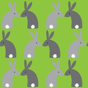 Gray bunnies green