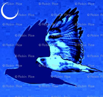 Night Hawk and Moon