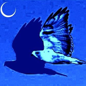Night Hawk and Moon