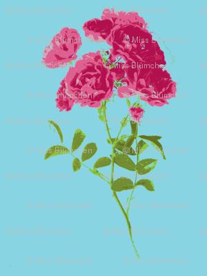 tea rose stripe small turquoise