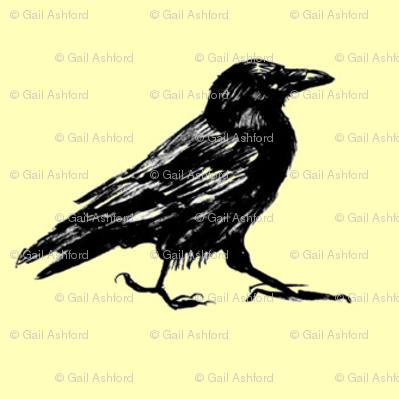 mr crow