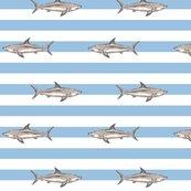 681784_sharksspoonoriginal_shop_thumb