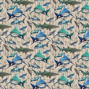 sharkrepeat2150