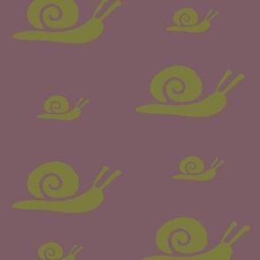 Olive Snails