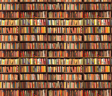 Book Shelf Fabric By Lauredesigns On Spoonflower