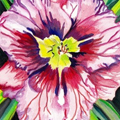 Day Lily by Angela Ungren