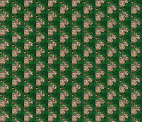 little_scare_hare fabric by vinkeli on Spoonflower - custom fabric