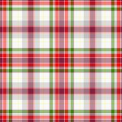 Rrrose_in_snow2tartan.pl_shop_thumb