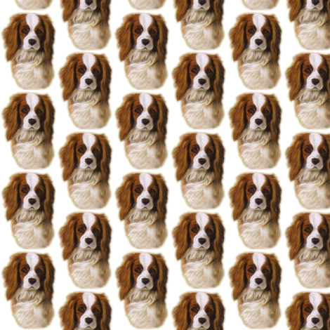 Cavalier King Charles spaniel dog Dani fabric by vinkeli on Spoonflower - custom fabric