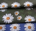 Rrrr9_daisies_black_bg_comment_108715_thumb
