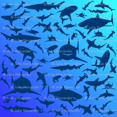 sharkprintblue