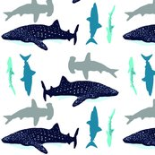 Rrrrrsharks_to_the_left__sharks_to_the_right_shop_thumb