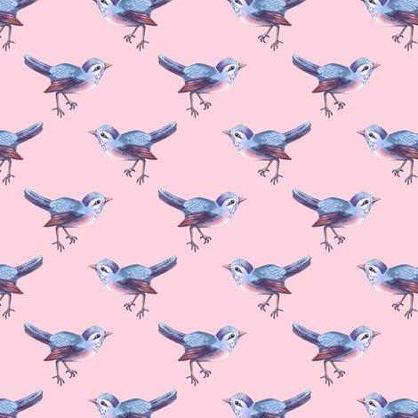 Rsongbird_blue_pink_shop_preview