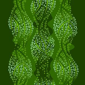 kelp 2