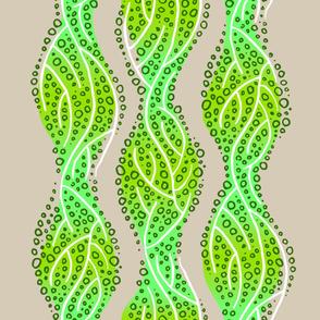 kelp 3