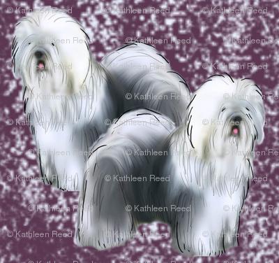 Old English Sheepdog Fabric Purple background