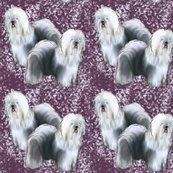 Rrrold_english_purple_background_shop_thumb