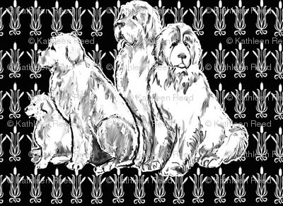 Newfy Black Background Gothic Pattern Wallpaper