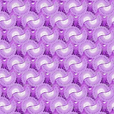 Blender Phlox Purple