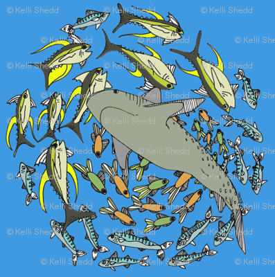 Sharks_and_Minnows