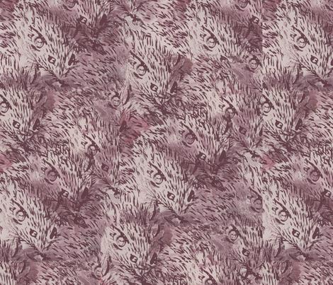 Whiskers fabric by glenda_thompson on Spoonflower - custom fabric