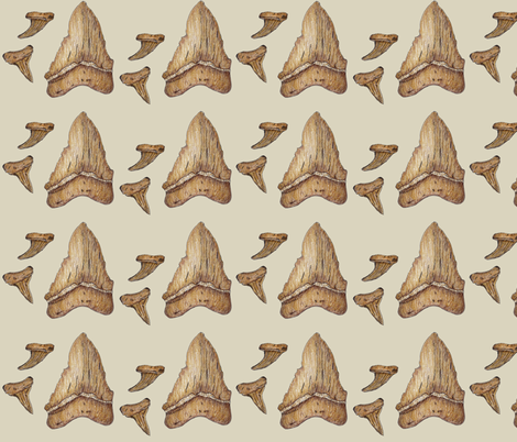 Shark Teeth Fossils fabric by ccreechstudio on Spoonflower - custom fabric