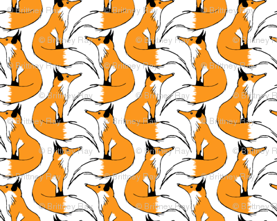Red Fox Stripes on White