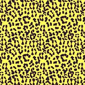 ©2011 Leopard - Spot o' Sunshine