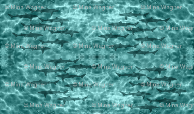 Dogfish sharks in shallow water - zoom for full pattern & self-border effect
