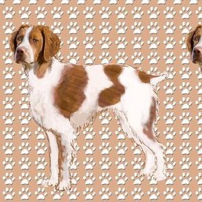 Brittany Spaniel fabric 2
