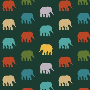 mini circus elephants