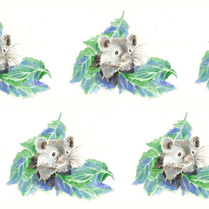 Cute Little Blue Mouse