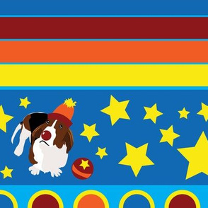 Wilbur the Circus Basset